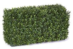 """1FT Artificial Boxwood Hedge Backdrop for special events and venues.    Commercial quality plant like features Tutone Green Limited UV protection Heights range from 12""""-30"""" Lengths range from 24""""-48"""" Don't see what you need?  Call us for further customized products."""