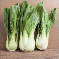 Légumes Graines Chou Brussels sprout Rosella organically Grown Heirloom