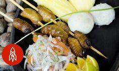 Gourmet Worms: The Amazon%u2019s Secret Ingredient