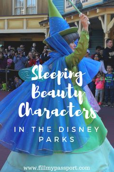 Sleeping Beauty Character Encounters to Add to your Walt Disney World Itinerary! Our guide shows you where to meet Princess Aurora, Prince Phillip, the Three Good Fairies, and the evil Maleficent #waltdisneyworld #disney #disneytravel #sleepingbeauty #usa #usatravel #traveltips #disneycharacters