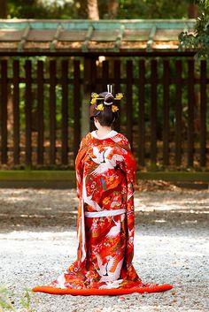 Asia - Japan, Shinto bride