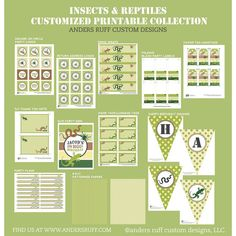 Insects Invitation Reptiles Snakes Lizards Spiders Bugs Buggy Birthday