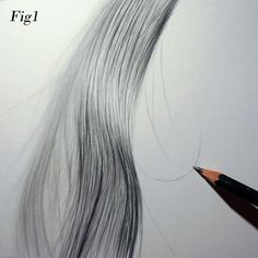 Top Tips Series 4: Graham Bradshaw  Drawing hair out of focus