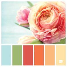 Flowers... Duca palets