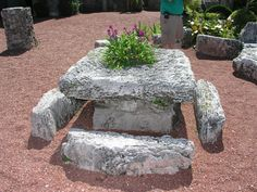 Square table brought by Ed from the original Florida City site toHomestead made of the layered oolite coral.