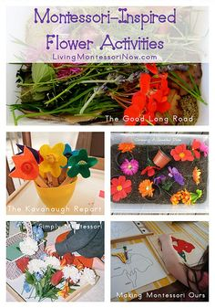 Montessori-Inspired Flower Activities (roundup with lots of activities for home or classroom)