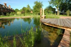 Natural, chlorine-free swimming pond