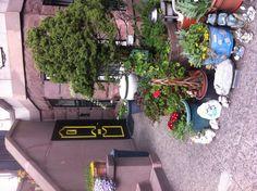Yellow Trim Door in Park Slope, Brooklyn, NY.