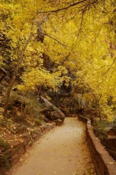 Temple Of Sinawava Path In Autumn. Zion National Park, Utah