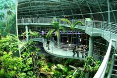 California Academy of Sciences - The California Academy of Sciences is the only place on the planet with an aquarium, a planetarium, a natural history museum, and a 4-story rainforest all under one roof. It's a stunning architectural achievement with hundreds of unique exhibits and nearly 40,000 live animals.