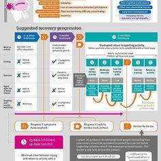 Infográfico de concussão! #concussion #concução #bmj #exercise #sportsmedicine #infographic #sportsinjury
