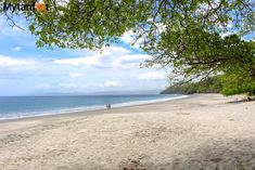 White Sand Beaches In Costa Rica Playa Caal Beach Beautiful Places To