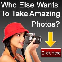 Photo Tutorials for Photography Beginners What Is Aperture? Photography Lessons, Free Photography, Photography For Beginners, Photography Tutorials, Digital Photography, Edit Your Photos, Photo Tutorial, Cool Photos, Photography Classes