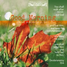 Good Morning Bible Verse, Happy Good Morning Quotes, Good Morning Cards, Good Morning Beautiful Quotes, Morning Inspirational Quotes, Good Morning Greetings, Good Morning Good Night, Good Morning Images, Motivational Pictures
