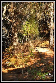 Hiking trail - Kwelanga Lodge  www.kwelanga.co.za