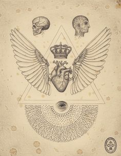 The soul of science / Sacred Geometry <3