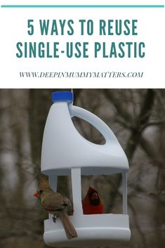 When avoiding single-use plastic is unavoidable, how can you reuse single-use plastic in your home? Reuse Plastic Bottles, Plastic Bottle Crafts, Bird Feeder Craft, Homemade Bird Feeders, Bird Houses Diy, Bottle Garden, Reuse Recycle, Garden Crafts, Diy Arts And Crafts