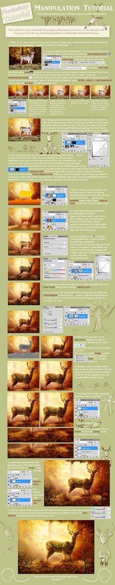Photoshop Manipulation tutorial by *tamaraR on deviantART