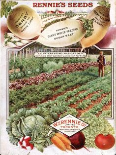 Back cover of Rennie's seed catalogue  1918