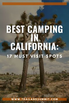 California, our third biggest state. There is no lack of camping here. In fact, so much camping that it can be hard to choose where to go. I've made it easier to narrow it down with this list of 17 must visit camping spots. Places To Travel, Places To Go, Travel Destinations, Cold Springs Campground, California Camping, California California, Los Padres National Forest, Channel Islands National Park, Camping Spots