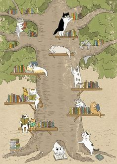 cats and the library tree