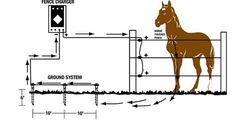 Advice from an electric-fencing expert on selecting and installing it for maximum security and safety for your horse. Plus, a maintenance checklist for you. By Bob Kingsbery with Sandra Cooke for