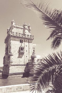 'Lisbon Dream' Original photographic print by Athina Photography. #Lisbon #Belem #Portugal #Europe #travel #wander #wanderlust #tropical #palm #palmtree #castle #tower #photography