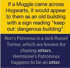 Harry Potter - Fun Facts