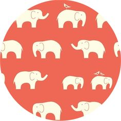 Birch Organic Fabrics, Mod Basics, KNIT, Elephant Family Coral