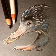 NIffler- Fantastic Beasts and Where to Find Them Harry Potter Drawings, Harry Potter Art, Harry Potter Universal, Fantastic Beasts Movie, Fantastic Beasts And Where, Creature Drawings, Animal Drawings, Chiara Bautista, Sketch Note