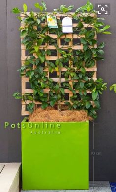 Lime Green Gloss UV Fibreglass Cube Planter from Potsonline   #lightweightpots