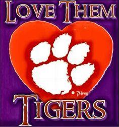 Clemson Football, Football Stadiums, Clemson Tigers, Jacksonville Jaguars, University, Community College, Colleges