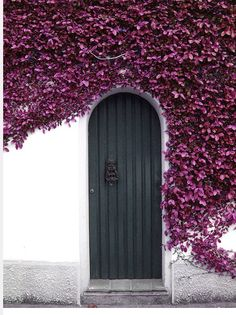 Door, purple flowes cover the wall.