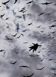 1987 Der Flug (The Flight) (1)