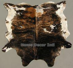 Brazilian Exotic Dark Brown Tricolor Brindle
