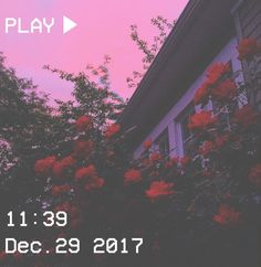 Bem Vinda(o) a pasta Soft!🍪 Aqui você encontra fotos Liindaaas ⸙͎ Ass~Hello Florzinhas! Sky Aesthetic, Aesthetic Images, Flower Aesthetic, Purple Aesthetic, Aesthetic Backgrounds, Aesthetic Iphone Wallpaper, Aesthetic Grunge, Aesthetic Vintage, Aesthetic Wallpapers