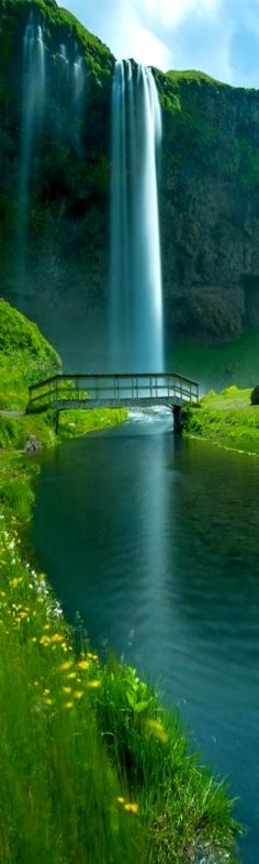99TravelTips  from 99TravelTips 11 Reasons Why You Need To Visit Iceland Seljalandsfoss Falls, Iceland