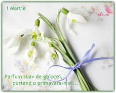 Parfum+de+ghiocei Advertising Ads, Birthday, Blog, Fragrance, Birthdays, Blogging, Dirt Bike Birthday, Birth Day