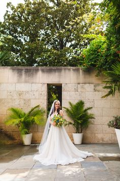 Botanical gardens wedding venue in Dallas Texas - this bridal styled shoot was stunning with the natural lighting. Outdoor Wedding Inspiration, Botanical Gardens Wedding, Bridal Session, Dallas Wedding, Wedding Moments, Bridal Portraits, Wedding Couples, Beautiful Bride, Summer Wedding