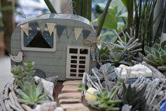 Zaubere dir deinen eigenen Sommer-Minigarten mit unserem passendem Zubehör! Urlaubsparadis einfach selbst gestalten! Bonsai, Around The Worlds, Instagram, Plants, Photos, Roses Garden, Landscape, Summer, Nature