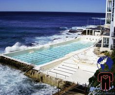 Creative Tonic loves the best place on earth to swim laps