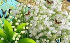 Lily of the valley..