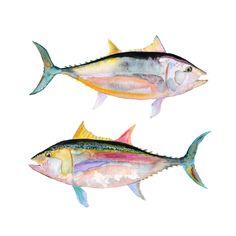 Watercolor Fish Print by SnoogsAndWilde on Etsy, Watercolor Fish, Watercolor Animals, Watercolor Paintings, Watercolours, Fish Wall Art, Fish Artwork, Inspiration Art, Fish Illustration, Sea Art