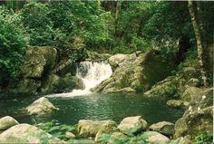 rainforest trujillo honduras