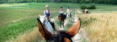 Horse trekking Tuscany, horseback riding Siena - Berardenga Horse Riding Centre Chianti