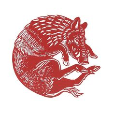 Red Boar Circle  Linocut print  limited edition of 20  Image size - 12 x 12 cm  Paper size approx - 24 x 24 cm  Paper - white Zerkall    This