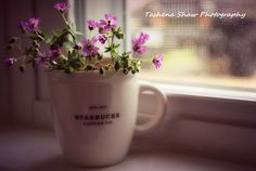 Use your favorite Starbucks mug as a vase for short stemmed flowers