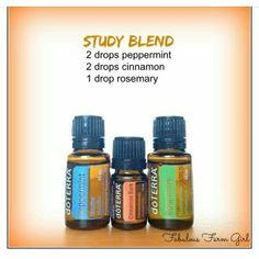 Study Blend.... I have a teenager that could use this!!