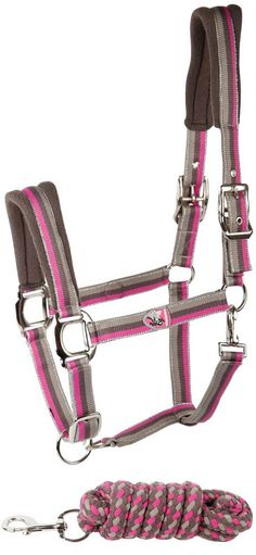 Harrys Horse Halter Radiant Orchid w/leadrope