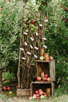 Stunning Autumn Apple Orchard Wedding Inspiration Shoot with Jewel Tone Floral Design by Boston Wedding Photographer Annmarie Swift